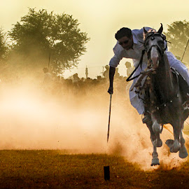 Niazi by Abdul Rehman - Sports & Fitness Other Sports ( sand, natural light, horse, angry, dangerous, horseback, rally, pakistan, adventure, multan, thrilling, dangerous sport, dust, sun light )