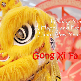 Gong Xi Fa Cai by Zaldy Ogawa - Typography Captioned Photos ( words, typography )