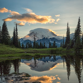Mount Rainier Sunset by Amy Ann - Landscapes Mountains & Hills