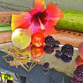 { Garden Goodies June 24 th }  by Jeffrey Lee - Food & Drink Fruits & Vegetables ( hibiscus, tomato, peach's, dew berry's, grass hoppers,  )