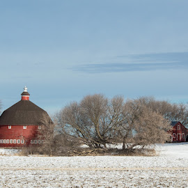 Round Barn by Chandra Whitfield - Buildings & Architecture Other Exteriors ( farm, sky, winter, red, barn, blue, round, landscape )