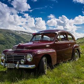 Volvo PV444 by Olav Aga - Transportation Automobiles ( car, classic car, aurlandsfjellet, vintage, volvo )