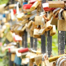 Love locks  by Karlo Cazar - City,  Street & Park  City Parks