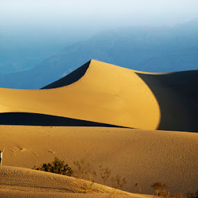Dunes by Francesco Riccardo Iacomino - Landscapes Deserts ( death valley, sand, dunes, desert, california, flat, mesquite )