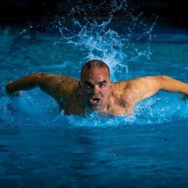 Night Swim Shoot by Darren Townsend - Sports & Fitness Swimming ( water, flash, butterfly, breathe, sports, biathlon, usms, swimming, endurance, training, stroke, fly, pool, triathlon, swim, train, pvac, night, masters, breath, athletic, strobe )