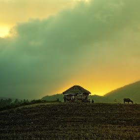 Farm Life by Atsot Garingalao - Landscapes Sunsets & Sunrises