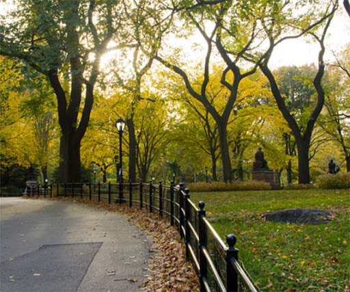 Attractions in East Village
