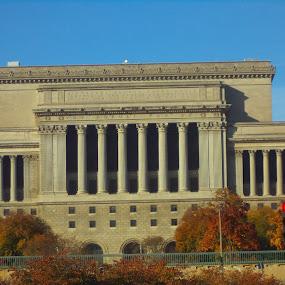 City hall Milwaukee by Suzette Christianson - Buildings & Architecture Public & Historical
