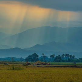 sunrays on hill by Arka Kt - Landscapes Travel ( arka hills )