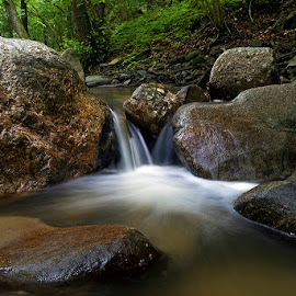 by Siniša Almaši - Nature Up Close Water ( forest, rocks, nature, stream, light, cascade, up close, stones, river, water, colours )