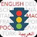 Führerschein multilingual Icon