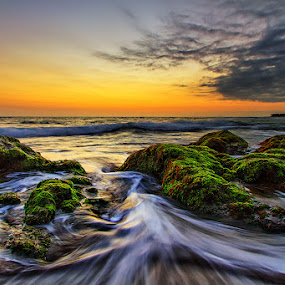 Spreading Waves by Satrya Prabawa - Landscapes Waterscapes ( water, bali, waves, indonesia, moss, sunrise, rocks )