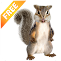Free Download Talking Squirrel APK for Samsung