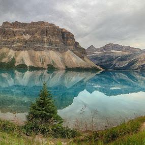 Bow Lake Pano by Jack Nevitt - Landscapes Mountains & Hills
