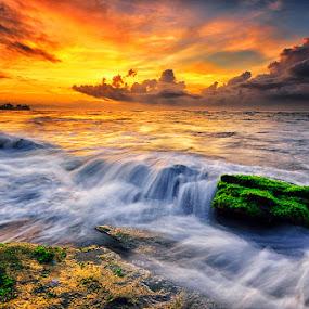 Green Piece by Hendri Suhandi - Landscapes Sunsets & Sunrises ( shore, bali, manyar, sunset, stone, rock, beach, sunrise, motion )
