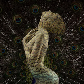 embrace your beauty by Kathleen Devai - Digital Art People ( fantasy, woman, art, feathers, peacock, portrait )