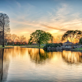 Reflections of Golden Hour by Shaun Poston - City,  Street & Park  City Parks ( shaun poston, tranquil, metairie, park, lafreniere, serene, sunset, louisiana, lake, hour, golden )