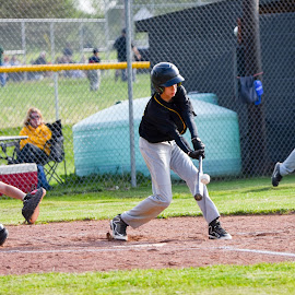 Watkins Middle School Baseball by Josh-Bojo Bojanowski - Sports & Fitness Baseball ( baseball,  )