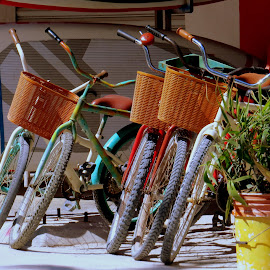 by Steve Tharp - Transportation Bicycles