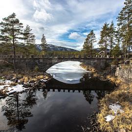 Sandvatn,Telemark , Norway by Svein Hansen - Landscapes Prairies, Meadows & Fields