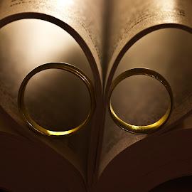 Rings hearts 2 by Olga Charny - Wedding Details