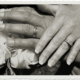 Wedding Rings by Sharon Abbott - Wedding Other ( love, newfoundland, hands, wedding, rings, flowers )