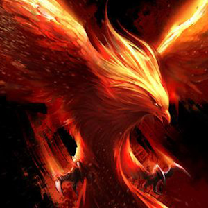 phoenix birds wallpaper