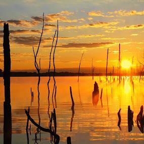 Suns Up by Roger Becker - Landscapes Sunsets & Sunrises
