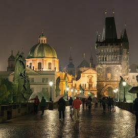 Rain, Charles Bridge, Prague by Peter K. Burian - City,  Street & Park  Street Scenes ( eastern europe, rainy night, europe, vltava river, czech republic, night, bridge, praha, prague, karlův most, charles bridge, rain, river )