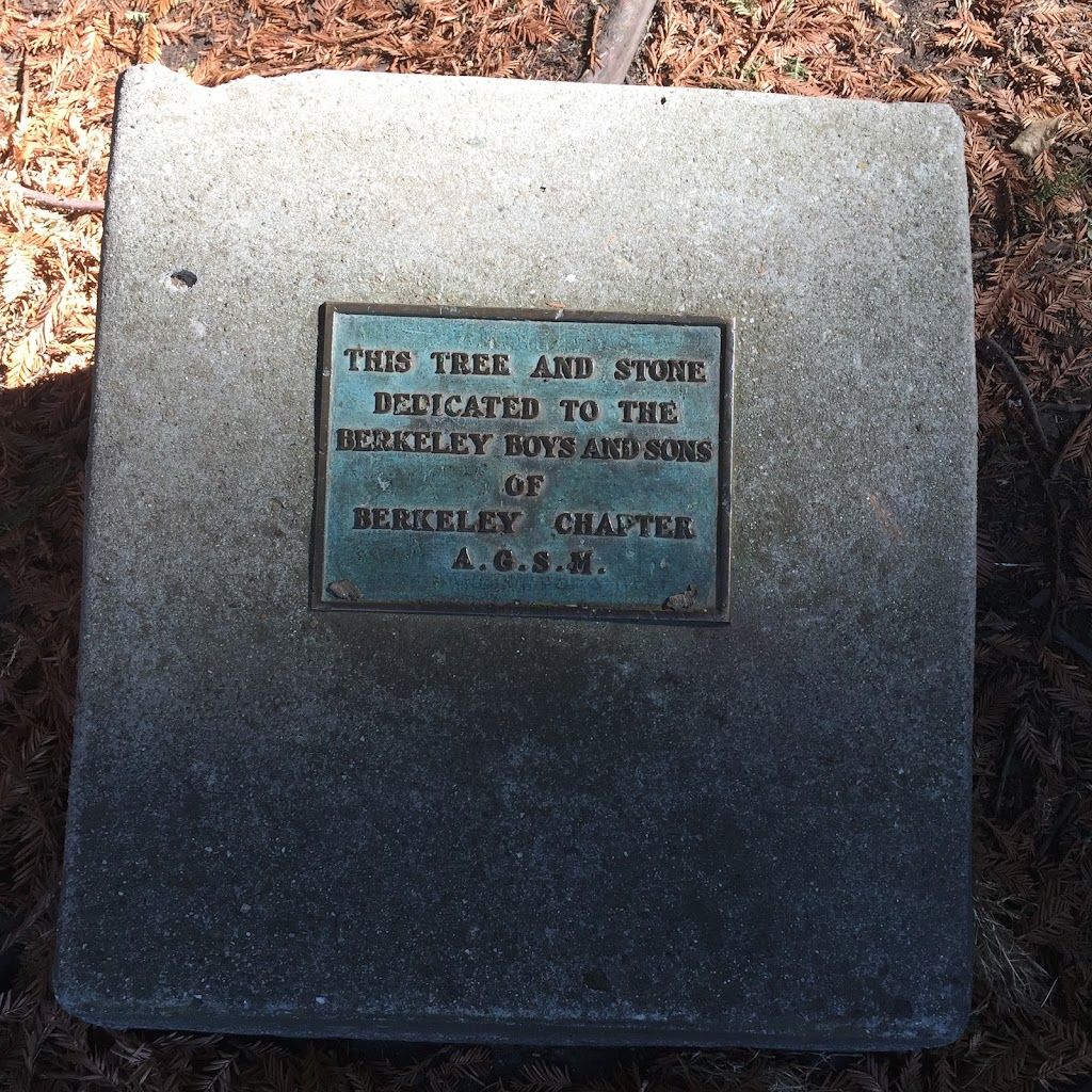 THIS TREE AND STONE DEDICATED TO THE  BERKELEY BOYS AND SONS  OF BERKELEY CHAPTER  A.G.S.M