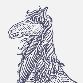 Horse by August Rats - Illustration Animals ( lineart, horse, crosshatching, ink )