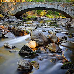 Puente by Gerardo Robledo - Nature Up Close Water ( forests, water, blur water, bridge, river )
