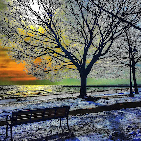 LEE ST BEACH Evanston,IL by Louis Perlia - Landscapes Sunsets & Sunrises ( water, clouds, sky, bench, hdr, color, snow, path, weather )