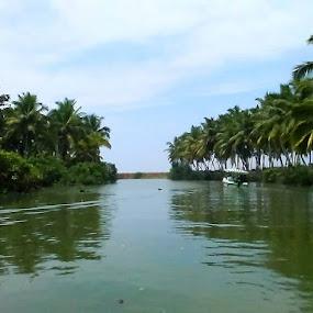 Back water by Soumaya Karmakar - Landscapes Forests