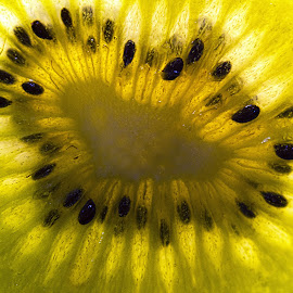 Kiwi macro by Fiona Etkin - Food & Drink Fruits & Vegetables ( macro, fruit, green, kiwi, seeds, vibrant, pips, close up )