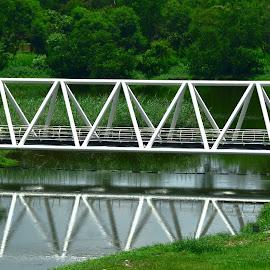 Bridge of Knowledge by Abhishek Kumar - Buildings & Architecture Bridges & Suspended Structures