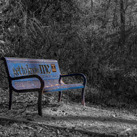 The Blue Bench by Greg Bennett - City,  Street & Park  City Parks ( park, bench, autumn, black and whlte, il, swansea, centennial park )