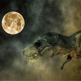 by Stephen Crawford - Digital Art Animals (  )
