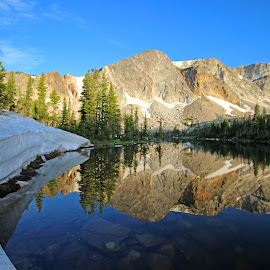 Summer Reflections by Kirby Hornbeck - Landscapes Mountains & Hills ( mountains, snow, lakes, reflections, trees, landscapes )