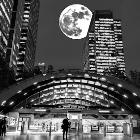 Full moon over London, Canary Wharf. by Roger Hamblok - Buildings & Architecture Office Buildings & Hotels ( building, europe, station, tube, black and white, metro, canary wharf, street, travel, architecture, cityscape, steel, space, city, urban, skyscraper, window, london, night, high, view, underground, evening, light )