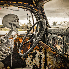 All Eyes On The Road by Garry Dosa - Public Holidays Halloween ( car, interior, creepy, bones, outdoors, driving, skeleton, halloween )