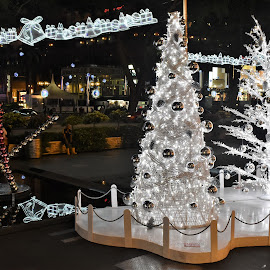 by Koh Chip Whye - Public Holidays Christmas (  )