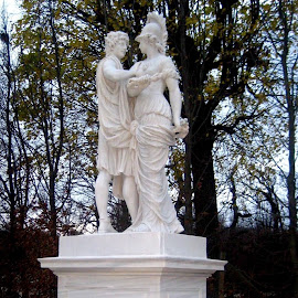 Statues at Schonbrunn Palace by Lil's Photography - Buildings & Architecture Statues & Monuments ( statue, vienna )