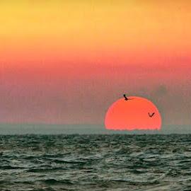 Setting sun  by Karina Kassman - Digital Art Places