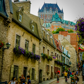 Quebec Lower City by Dale Youngkin - City,  Street & Park  Historic Districts ( tourist, quebec, canada, street, quebec city, historic,  )