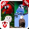 75 Bird sounds APK Descargar