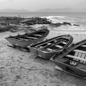 by Ricardo Figueirido - Black & White Landscapes
