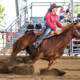 Bend It by Sarah Sullivan - Sports & Fitness Other Sports ( #barrel racing, #dalby, #sarahsullivanphotography, #qbra )