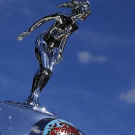 Triumph Mascot by DJ Cockburn - Transportation Automobiles ( north weald, car, monochrome, black and white, vintage, automobile, sports car, gpw540, standard motor company, triumph roadster, grayscale, england, classic car, london, vintage vehicle rally, essex, historical, antique )