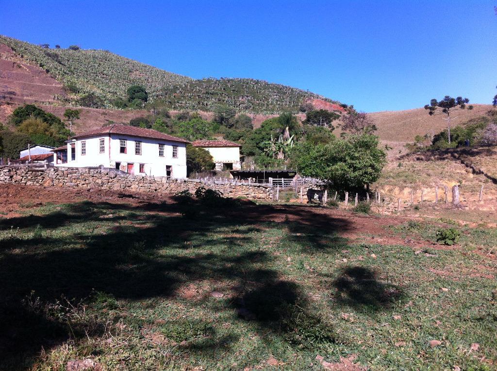 Fazenda Leiteira 115 ha, Zona Rural, Carmo de Minas.